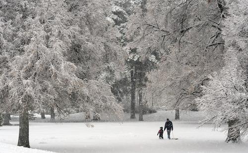 Rick Egan    The Salt Lake Tribune   Javier Kenyon walks through the newly fallen snow at Liberty Park to go sledding  with his 3-year-old daughter Lilli, Thursday, December 19, 2013.