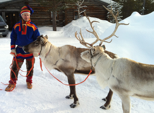 In this March 2013 photo, A Sami handler in traditional clothing holds two of his herd in Saariselka, Finnish Lapland. Reindeer are featured on Christmas cards and in movies worldwide this time of year, galloping across the sky with Santa's sleigh in tow. But on Europe's northern fringe, the migratory mammals are part of everyday life all year round as they roam the fells of Lapland - the Arctic homeland of the indigenous Sami people of Norway, Sweden, Finland and northwest Russia.  (AP Photo/ David McDougall)