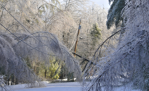 Trees frozen in ice cripple a section of power lines on Maplehurst Drive  in Belgrade, Maine, Tuesday, Dec. 24, 2013. From Michigan to Maine, hundreds of thousands remain without power days after a massive ice storm _ which one utility called the largest Christmas-week storm in its history _ blacked out homes and businesses in the Great Lakes and Northeast. (AP Photo/The Central Maine Morning Sentinel, Michael G. Seamans)