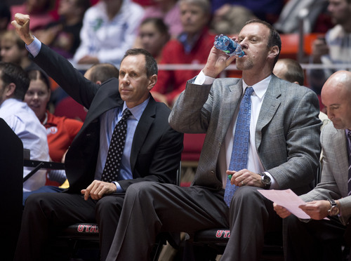 Lennie Mahler  |  The Salt Lake Tribune Utah assistant coach Tommy Connor and head coach Larry Krystkowiak watch as Utah pulls away to defeat Lamar 84-57 Friday, Nov. 22, 2013, at the Huntsman Center.