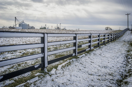 Snow covers a fence at Caverndale Farms on Bluegrass Pike Thursday, Jan. 9, 2014, in Danville, Ky. (AP Photo/The Advocate-Messenger, Clay Jackson) TABLOIDS OUT