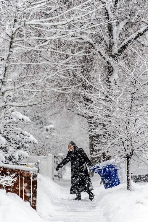 Trent Nelson  |  The Salt Lake Tribune A recycling bin is retrieved in Salt Lake City, Thursday January 9, 2014.