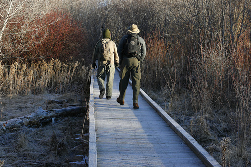 Scott Sommerdorf  |  The Salt Lake Tribune              Robert Duke, left, and his college buddy Duane Smith walk into the marshes south of the Jordanelle Reservoir during the 112th annual Audubon Christmas Bird Count. Counts are being held across the state, Saturday, December 17, 2011.