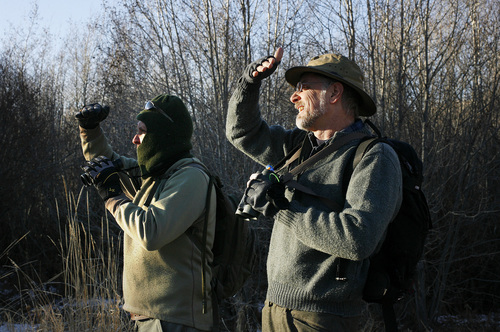 Scott Sommerdorf  |  The Salt Lake Tribune              Robert Duke, left, and Duane Smith stop to try to identify some birds spotted in the brush near the base of the Jordanalle Reservoir Dam during the 112th annual Audubon Christmas Bird Count. Counts are being held across the state, Saturday, December 17, 2011.