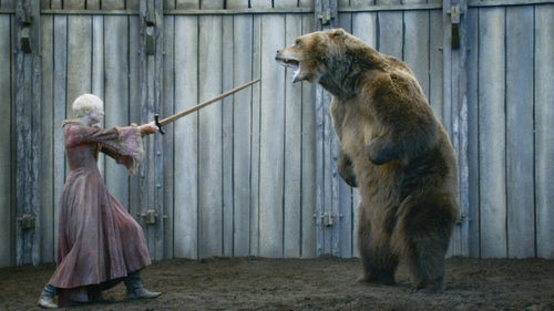 "Courtesy photo Bart the Bear from Heber City, Utah in one of his latest roles appearing with Gwendoline Christie in HBO's ""Game of Thrones""."