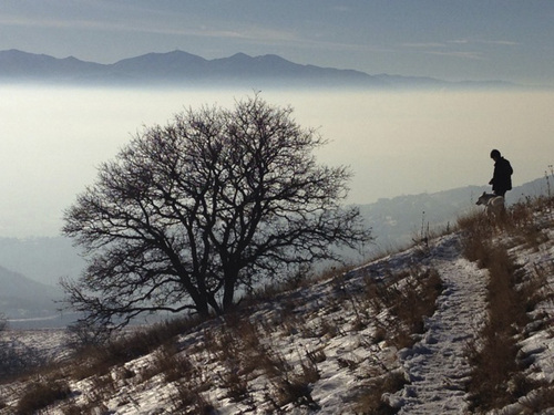 """(  Courtesy KUED Channel 7) The KUED Channel 7 program """"The Air We Breathe"""" about Salt Lake City's winter pollution problem airs Wednesday, Feb. 5, at 7 p.m. The program will repeat Feb. 7 at 8 p.m. and Feb. 9 at 4 p.m."""