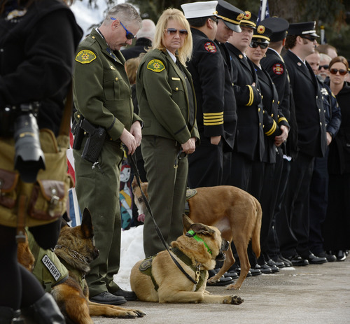 Steve Griffin     The Salt Lake Tribune   Law enforcement officers from across the state and the public line a road leading to the grave for slain Utah County Sheriff's Sgt. Cory Wride during interment services at the Spanish Fork Cemetery, in Spanish Fork, Utah Wednesday, February 5, 2014.