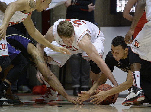 Francisco Kjolseth  |  The Salt Lake Tribune Utah Utes center Dallin Bachynski (31) tries to muscle his way into a loose ball against Washington in game action at the Huntsman Center on the University of Utah campus on Thursday, Feb. 6, 2014.