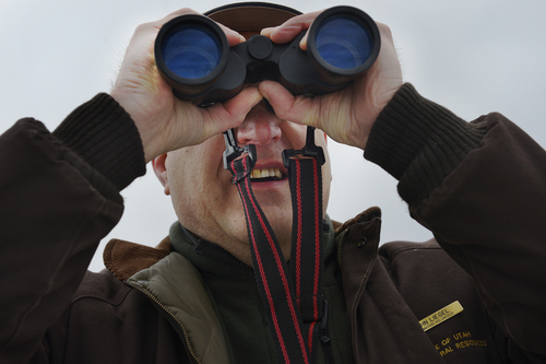 Scott Sommerdorf   |  The Salt Lake Tribune DNR volunteer John Liegel searches for Bald Eagles on Bald Eagle Day at Farmington Bay Waterfowl Management Center on Saturday.