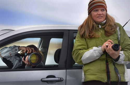 Scott Sommerdorf   |  The Salt Lake Tribune Debbie LaBell, left, and Rhonda Bartlett make photos of the waterfowl during Bald Eagle Day at Farmington Bay Waterfowl Management Center, Saturday, Feb. 8, 2014. Sightings of Bald Eagles were scarce.