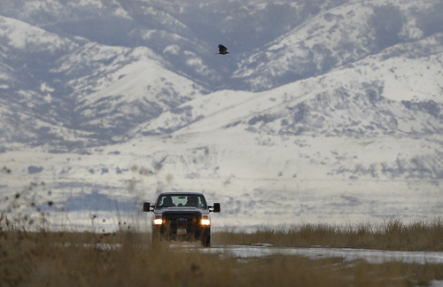 Scott Sommerdorf   |  The Salt Lake Tribune A DNR truck passes by during Bald Eagle Day at Farmington Bay Waterfowl Management Center, Saturday, Feb. 8, 2014.