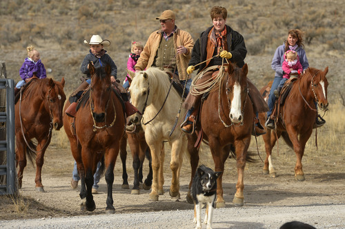 Leah Hogsten  |  The Salt Lake Tribune LuAnn Adams and husband Bob ride with their grandchildren, from left, Brynlee, 2, Hayden, 5, Kylee, 3, and daughter-in-law Jenny, holding TayCee, 2, Saturday, February 22, 2014 at their ranch in Promontory. The former Box Elder County Commissioner, LuAnn Adams, is the new commissioner of Agriculture for Utah and the first woman to hold the post. Adams is a self-described cowgirl whose favorite thing is to ride horses, travel in an antique buckboard wagon and cook Sunday dinners for her five children and 12 grandchildren.
