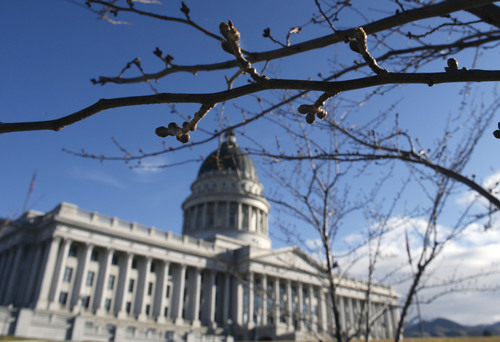 Al Hartmann  |  The Salt Lake Tribune  Buds on ornamental cheery trees ringing the Utah State Capitol begin to swell.  A sure sign of eventual spring and the end of the 2014 Utah legislative session.