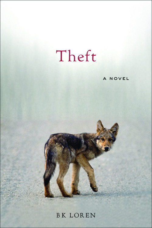 """Book cover of the novel """"Theft."""" Courtesy image"""