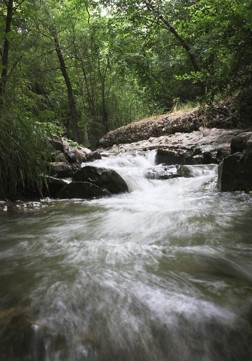 | Tribune File Red Butte Creek flows through Miller Park. 7/21/05