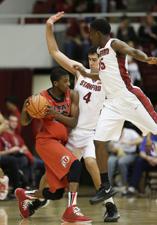 Utah guard Delon Wright, left, tries to pass the ball as Stanford center Stefan Nastic (4) and guard Marcus Allen (15) defend during the second half of their NCAA college basketball game Saturday, March 8, 2014, in Stanford, Calif. Stanford won the game 61-60. (AP Photo/Eric Risberg)