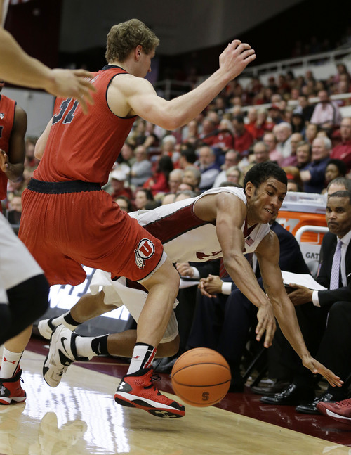 Stanford forward Josh Huestis, right, dives for the ball as Utah center Dallin Bachynski, left, looks on during the second half of their NCAA college basketball game Saturday, March 8, 2014, in Stanford, Calif. Stanford won the game 61-60. (AP Photo/Eric Risberg)