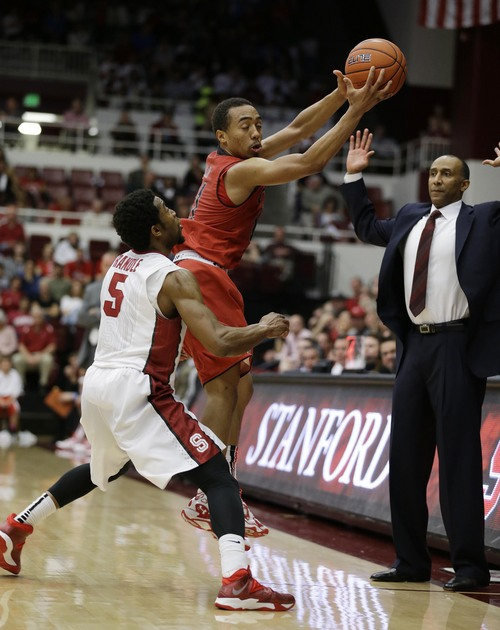Utah guard Brandon Taylor regains control of the ball as Stanford guard Chasson Randle (5) looks on during the first half of their NCAA college basketball game Saturday, March 8, 2014, in Stanford, Calif. At right is Stanford head coach Johnny Dawkins. (AP Photo/Eric Risberg)
