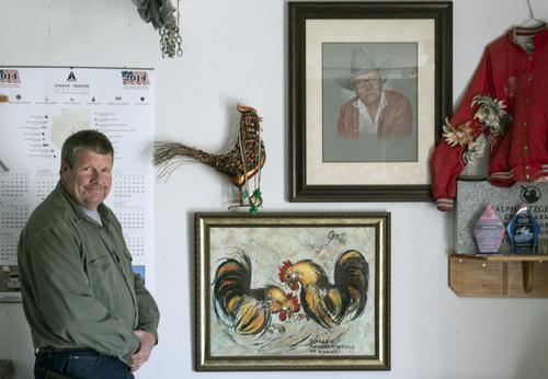 Keith Johnson | The Salt Lake Tribune  Tim Fitzgerald stands next to a portrait of his father at his home in Bluffdale, Utah, March 3, 2014. Fitzgerald is an advocate to legalize cock fighting in Utah.
