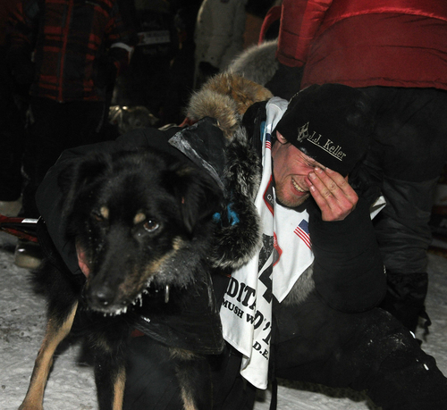 Dallas Seavey holds his lead dog Beatle after winning the 2014 Iditarod Trail Sled Dog Race in Nome, Alaska, Tuesday, March 11, 2014.  (AP Photo/The Anchorage Daily News, Bob Hallinen)  LOCAL TV OUT (KTUU-TV, KTVA-TV) LOCAL PRINT OUT (THE ANCHORAGE PRESS, THE ALASKA DISPATCH)