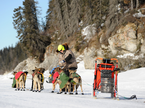 Iditarod musher Jeff King, from Denali, Alaska, is the first musher to leave the White Mountain checkpoint during the 2014 Iditarod Trail Sled Dog Race on Monday, March 10, 2014. (AP Photo/The Anchorage Daily News, Bob Hallinen)