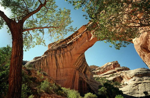 Al Hartmann | Tribune File Sippapu Bridge in Natural Bridges National Monument in 2006. A National Park Service report shows Utah's efforts to open nine units during the federal government shutdown paid off with visitors spending $10 for every $1 the state spent for the opening.