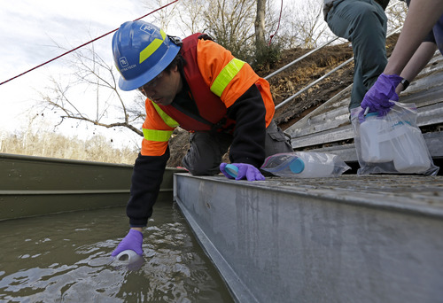 FILE - In this Feb. 5, 2014 file photo, Didi Fung, a contractor for the Environmental Protection Agency, collects water samples from the Dan River as state and federal environmental officials continued their investigations of a spill of coal ash into the Dan River in Eden, N.C. Documents and interviews collected by The Associated Press show how Duke's lobbyists prodded Republican legislators to tuck a 330-word provision in a regulatory reform bill running nearly 60 single-spaced pages. Though the bill never once mentions coal ash, the change allowed Duke to avoid any costly cleanup of contaminated groundwater leaching from its unlined dumps toward rivers, lakes and the drinking wells of nearby homeowners. (AP Photo/Gerry Broome, File)