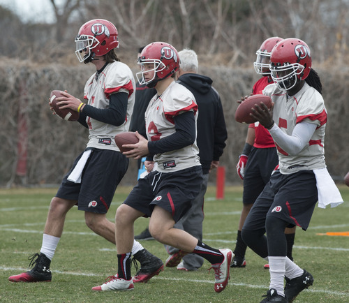 Steve Griffin  |  The Salt Lake Tribune   Quarterbacks Travis Wilson, Adam Schulz and Brandon Cox drop back to pass during spring practice on the University of Utah campus in Salt Lake City, Utah Tuesday, March 18, 2014.