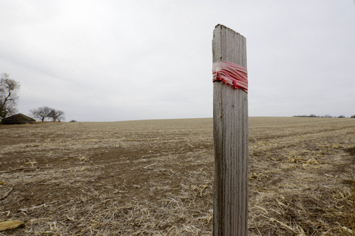 In this March 17, 2014 photo a stake in the ground wrapped with tape marks the route of the Keystone XL pipeline in Tilden, Neb. More than three-fourths of Nebraska's landowners have signed agreements to let pipeline developer TransCanada run the oil line through their property. Many have received six-figure payments for easements and temporary crop losses while the pipeline is installed.   (AP Photo/Nati Harnik)