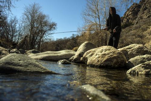 Chris Detrick     The Salt Lake Tribune Mark Halverson, of Salt Lake City, fishes in Big Cottonwood Creek Thursday March 20, 2014.