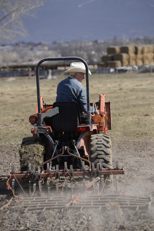 Franciso Kjolseth  |  The Salt Lake Tribune Land owner Moreno Robins, 82, who has owned property by Utah lake near where the Provo river meets the lake for over 40 years points readies his fields for Spring on his current 37 acres. The U.S. Interior Department proposes restoring the Provo River delta by acquiring 310 acres of marsh and agricultural lands where the river meets Utah Lake and diverting much of the rivers flow over it, recreating a lost wetland ecosystem that would provide habitat crucial to the recovery of endangered June sucker.