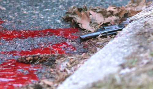 A revolver lies in a pool of blood in the street next to Heriberto Pagan's car, in the Rosebank section of the Staten Island borough of New York, Friday, March 28, 2014. Police say that the 86-year-old Pagan shot his grandson in the head, wounding him, before killing the man's girlfriend. He got in his car and drove a couple blocks from the murder before taking his own life. Police say the motive for the murder/suicide is unclear. (AP Photo/Staten Island Advance, Bill Lyons) NO SALES