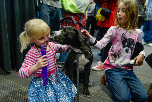 Franciso Kjolseth  |  The Salt Lake Tribune Lexi Monroe, 4, gets a lick on the nose as she and Ellie McMurrin, 8, play with Mel who is up for adoption during the Best Friends Animal Society introduction of its NKUT (No-Kill Utah) initiative. Designed to make Utah the largest no-kill state in the country the special event kicked off at The Leonardo in Salt Lake City on Sunday, March 30, 2014. Three oversized visuals, each 8 feet tall, were unveiled that are typical of the images that will be seen throughout the state as part of the campaign.