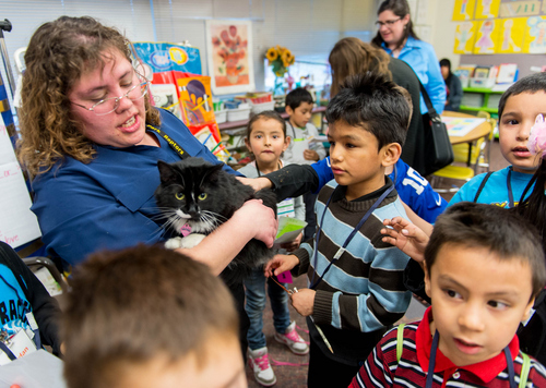 Trent Nelson  |  Tribune file photo Star Lamping holds a cat for children to pet during the class Kids Love Mystery at the Rose Park Academy in Salt Lake City in February 2014. A new Kids Count study, Race for Results, points up disparities in the well-being of children from different racial and ethnic groups.