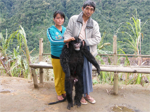 """In this Dec. 27 2011 photo released by Fauna & Flora International for editorial use, ethnic Lisu hunters hold a illegally, freshly hunted snub-nosed monkey, that subsequently identified as """"De Holo"""" type in Sawlaw, northern Kachin State, Myanmar. The British-based conservation group said Tuesday illegal Chinese logging and demand for monkey bones are threatening the Myanmar snub-nosed monkey, a rare monkey species in northern Myanmar. (AP Photo/Jeremy Holden, Fauna & Flora International)"""