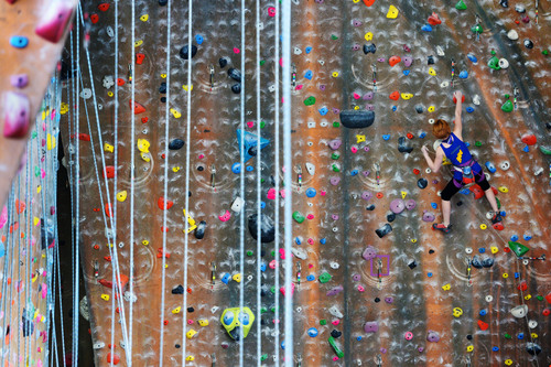 Steve Griffin  |  The Salt Lake Tribune   Climbers make their way up a wall at Momentum indoor climbing gym in Sandy, Utah Wednesday, April 2, 2014.