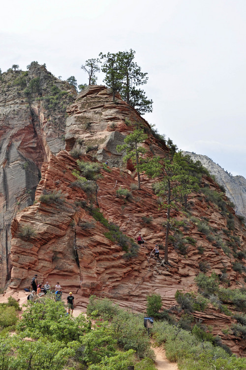 Erin Alberty  |  The Salt Lake Tribune Hikers approach the knife-edge ridge that leads to Angels Landing.