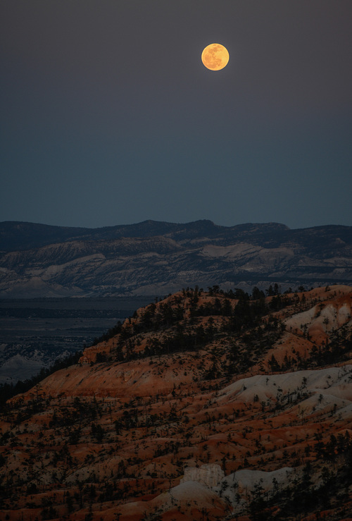 Franciso Kjolseth  |  The Salt Lake Tribune The moon rises over Bryce Canyon before being eclipsed by the Earth's Shadow early Tuesday morning as seen from Bryce Canyon near the E.T. formation as it is affectionately known by the local rangers. Bryce Canyon, famed for its dark skies is a great place to marvel at the stars and this week's blood moon.