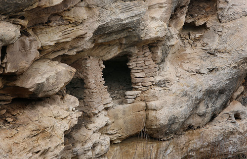 "Scott Sommerdorf  |  The Salt Lake Tribune An Anasazi ruin in the cliff close to ""Lem's Trail"" in Recapture Canyon, Saturday, April 9, 2011, near Blanding Utah."