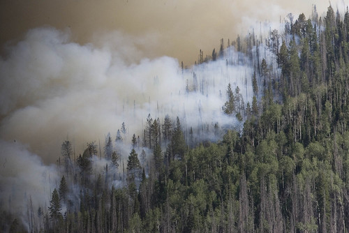 Smoke rises from the Seeley Fire burning Wednesday, June 27, 2012, in the Manti-La Sal National Forest. (AP Photo/Paul Fraughton, The Salt Lake Tribune)