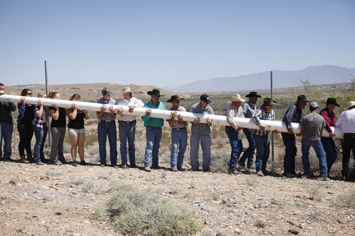 """People help erect a pole to hang a banner during a rally in support of Cliven Bundy near Bunkerville Nev. Monday, April 7, 2014, 2014. The Bureau of Land Management has begun to round up what they call """"trespass cattle"""" that rancher Cliven Bundy has been grazing in the Gold Butte area 80 miles northeast of Las Vegas.  (AP Photo/Las Vegas Review-Journal, John Locher)"""