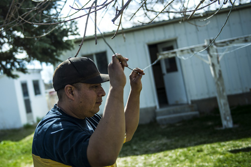 Chris Detrick  |  The Salt Lake Tribune Eusebio Granda watches his kids play at their home in Garland Wednesday April 16, 2014. Part of the family has been ordered to be deported to El Salvador.