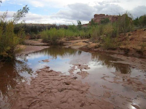 The Salt Creek/Horse Canyon road in the Needles District of Canyonlands National Park flooded Oct. 5, 2011. Photo courtesy Canyonlands National Park