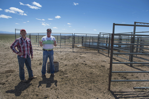 Rick Egan  |  The Salt Lake Tribune  Iron County Commission Chairman David Miller, left, and Beaver County Commissioner Mark Whitney discuss the failed attempt to lure wild horses into a water corral on private land northwest of Cedar City,  Wed., April 23, 2014.