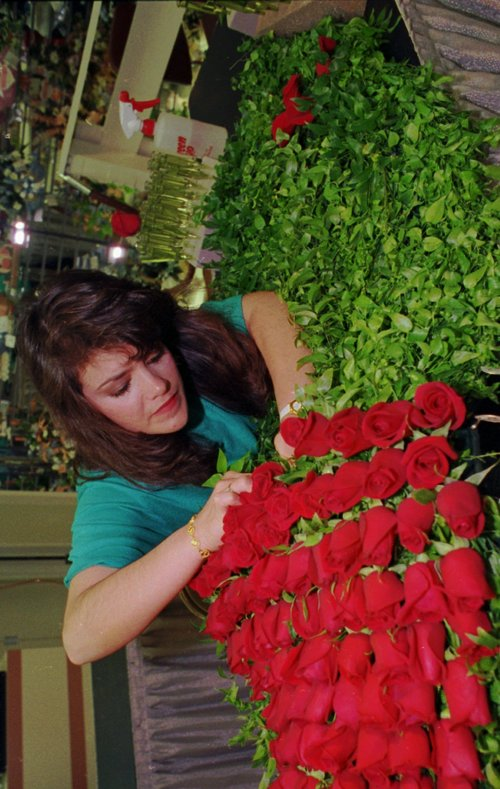 """Joyce Blair sews roses into the blanket May 3, 1991 as she and other workers prepare """"The Garland of Roses"""" that will grace the winning horse in the Kentucky Derby. The garland is made up of 564 red roses and takes 12 hours to construct. (AP Photo/Mike Fisher)"""