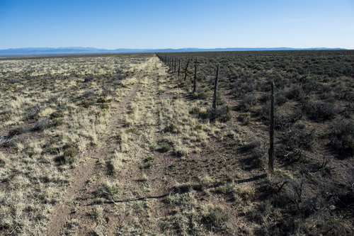 Rick Egan  |  The Salt Lake Tribune  Cattle has grazed on the private land on the left, cattle and wild horses have grazed on the public land on the right, on this portion of land northwest of Cedar City, Wednesday, April 23, 2014