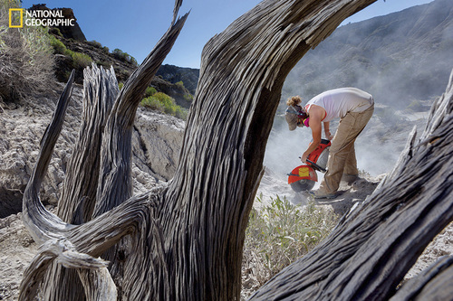 Photograph by Cory Richards At the Grand Staircase–Escalante National Monument, Carol Lucking of the Denver Museum of Nature & Science cuts through a slab of sandstone with a diamond-bladed rock saw. Her object: bones from a young duckbill. Image from the May issue of National Geographic magazine. http://ngm.nationalgeographic.com/2014/05/utah-dinosaurs/richards-photography