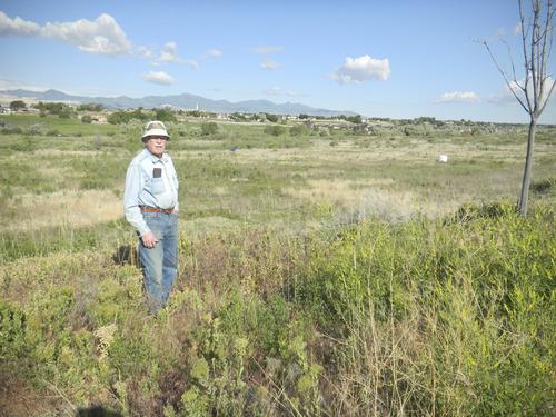Tom Wharton  |  The Salt Lake Tribune Great Salt Lake Audubon member Keith Johnson looks out over the Jordan River Migratory Bird Reserve in South Jordan.