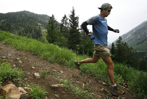 | Tribune file photo Karl Meltzer(cq), runs the trails of Snowbird recently as he trains for the ultimate distance. Majority interest in the ski resort was sold to Ian Cumming and his family in May 2014.