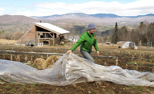 FILE - In this April 24, 2014, file photo,, Katie Spring rolls up plastic that was used to cover certain plants during the winter in a field at the Good Heart Farmstead in Worcester, Vt. Spring and her husband Edge Fuentes, who both own the farm, back the GMO labeling bill passed by the Vermont legislature. Genetically modified foods have been around for years, but most Americans have no idea if they are eating them. The Food and Drug Administration says they don't need to be labeled, so the state of Vermont has moved forward on its own. On May 8, Gov. Peter Shumlin signed legislation making the state the first to require labeling of GMOs - technically genetically modified organisms. (AP Photo/Wilson Ring, File)